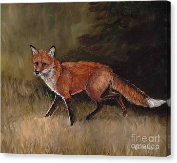 Red Fox Canvas Print by Charlotte Yealey