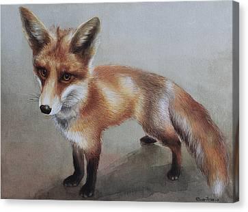 Red Fox Canvas Print by Ezartesa