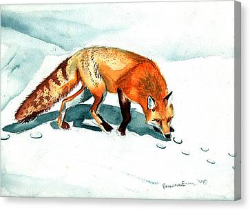 Red Fox Canvas Print by Genevieve Esson