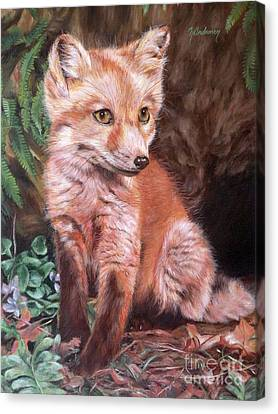 Red Fox Kit Canvas Print by Nancy Andresen