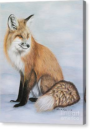 Red Fox Canvas Print by Lena Auxier