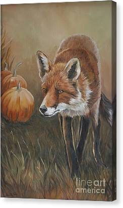 Red Fox With Pumpkins Canvas Print by Charlotte Yealey