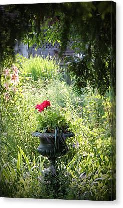 Red Geranium Canvas Print by John Stuart Webbstock