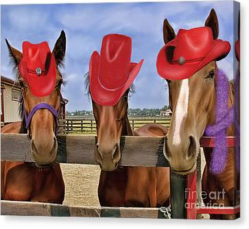 Red Hat Ladies Canvas Print by Sami Martin
