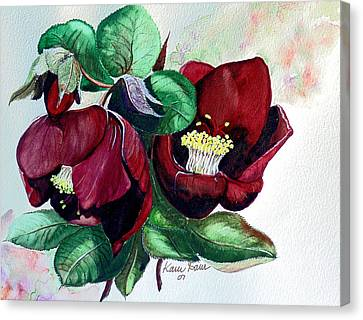 Red Helleborous Canvas Print by Karin  Dawn Kelshall- Best