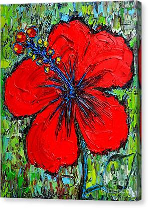 Red Hibiscus Canvas Print by Ana Maria Edulescu