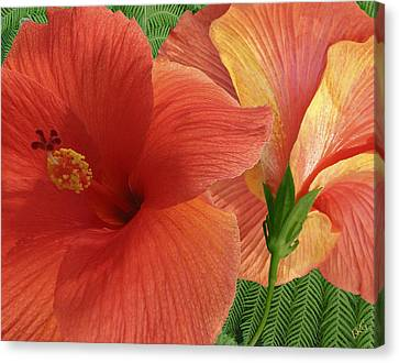 Canvas Print featuring the photograph Red Hibiscus by Ben and Raisa Gertsberg