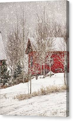 Red House In A Snowstorm Canvas Print by Janis Knight