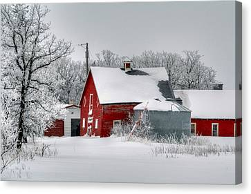 Red In White Canvas Print by Larry Trupp