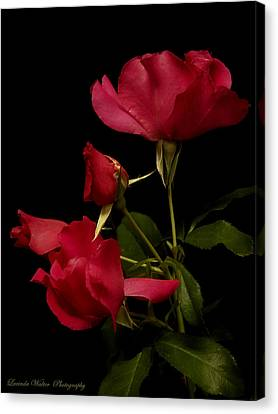 Canvas Print featuring the photograph Red Is For Passion by Lucinda Walter