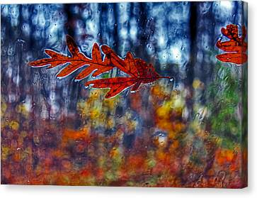 red leaves on windshield Dry Brush Canvas Print