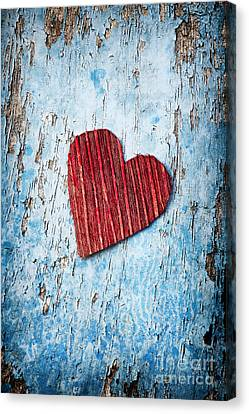 Red Love Heart  Canvas Print by Tim Gainey