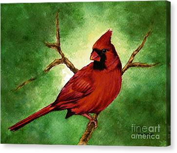 Red Male Cardinal Canvas Print