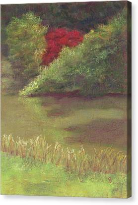 Sudbury Ma Canvas Print - Red Maple by Stacey David
