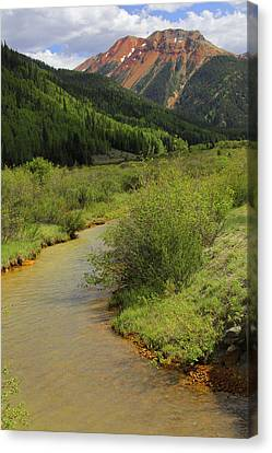Red Mountain Creek - Colorado  Canvas Print by Mike McGlothlen
