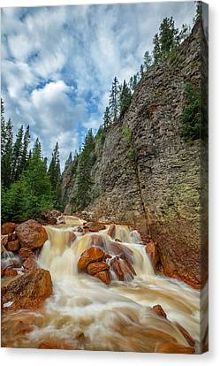 Red Mountain Creek Canvas Print by Darren  White