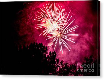 Red Night Canvas Print by Suzanne Luft