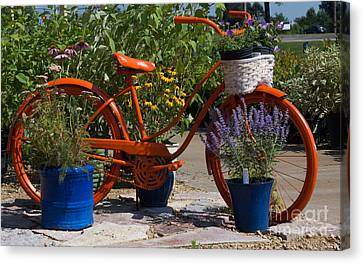 Red Orange Flower Basket Bike Canvas Print