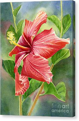 Red Orange Hibiscus With Background Canvas Print by Sharon Freeman
