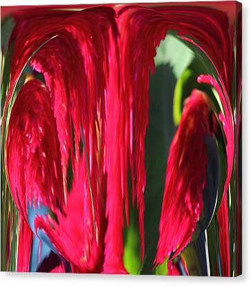 Red Orb Canvas Print by Rhonda Humphreys