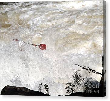 Canvas Print featuring the photograph Red Paddle by Carol Lynn Coronios