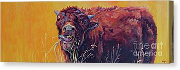 Bison Canvas Print - RED by Patricia A Griffin