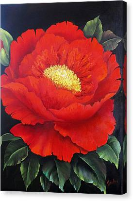 Red Peony Canvas Print by Katia Aho