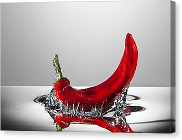Red Pepper Freshsplash Canvas Print by Steve Gadomski