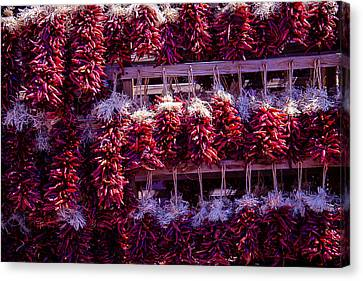 Red Peppers In Bunches Canvas Print by Garry Gay