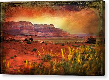 Red Planet Canvas Print by Barbara Manis