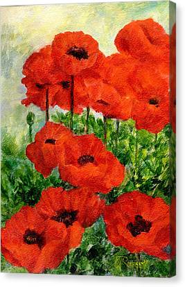 Red  Poppies In Shade Colorful Flowers Garden Art Canvas Print