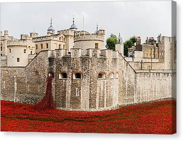 Red Poppies In The Moat Of The Tower Of London Canvas Print