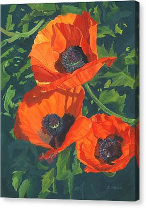 Canvas Print featuring the painting Red Poppies Three by Lynne Reichhart