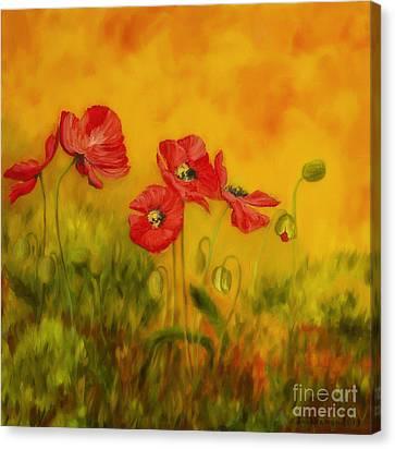 Harmonious Canvas Print - Red Poppies by Veikko Suikkanen