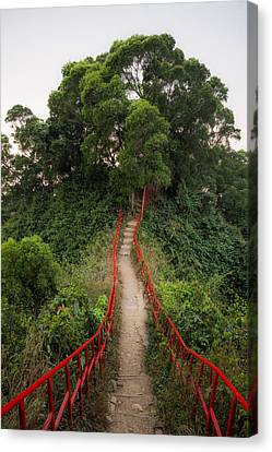 Red Rails Canvas Print