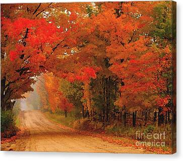 Red Red Autumn Canvas Print by Terri Gostola
