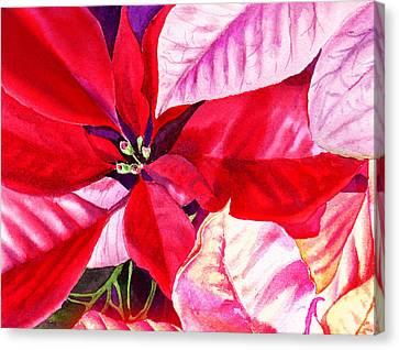 Red Red Christmas Canvas Print by Irina Sztukowski