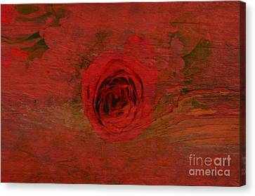 Red Red Rose Canvas Print by Kathleen Struckle