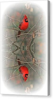 Red Reflection Canvas Print by Barbara S Nickerson