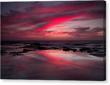 Red Reflections Canvas Print