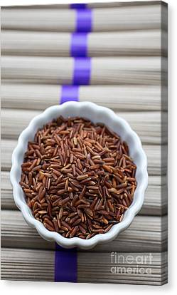 Red Rice Canvas Print by Edward Fielding