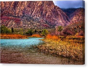 Red Rock Canyon Conservation Area Canvas Print by David Patterson