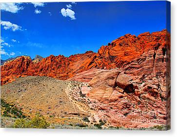Red Rock Canyon Canvas Print by Mariola Bitner