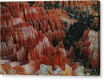 Red Rock Canvas Print by Jeff Swan