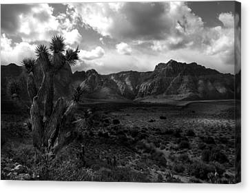Red Rock Mountains Canvas Print