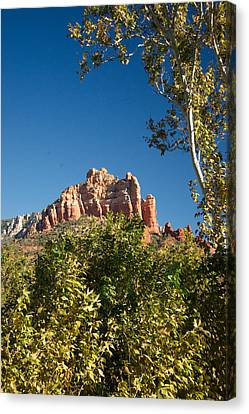 Red Rocks At Oak Creek Canyon 1 Canvas Print by Douglas Barnett
