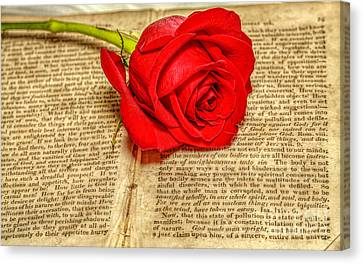 Red Rose And Old Book Still Life Two Canvas Print by Randy Steele