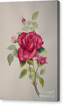 Canvas Print featuring the painting Red Rose by Beatrice Cloake