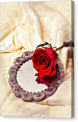 Love Laces Canvas Print - Red Rose by Amanda Elwell