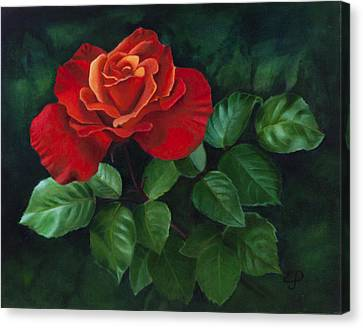 Red Rose - Oil Painting On Canvas Canvas Print